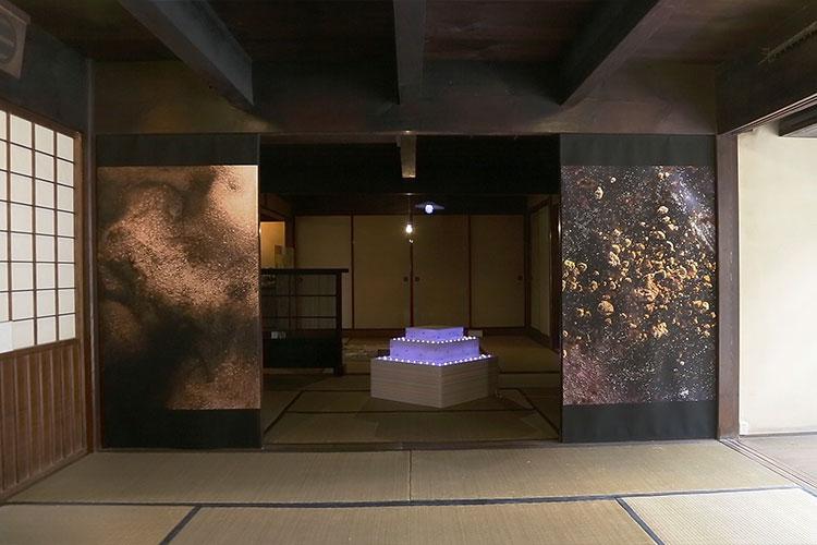 O-09/O-11 関口 涼子/田島 秀彦