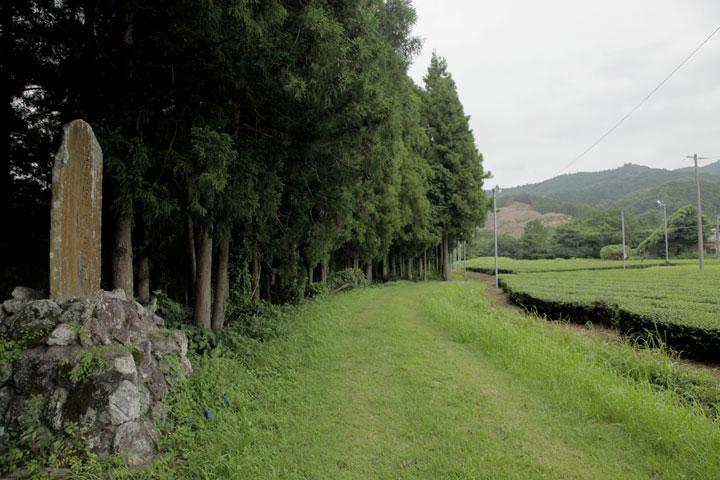 鳥居強右衛門墓 右手に見えるのが鳶ヶ巣山