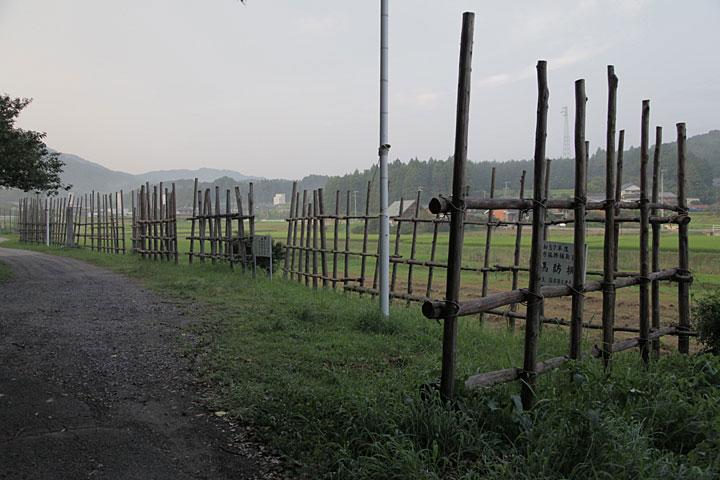 馬防柵(織田軍)から見た決戦場