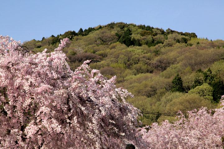 東国山(名古屋市)