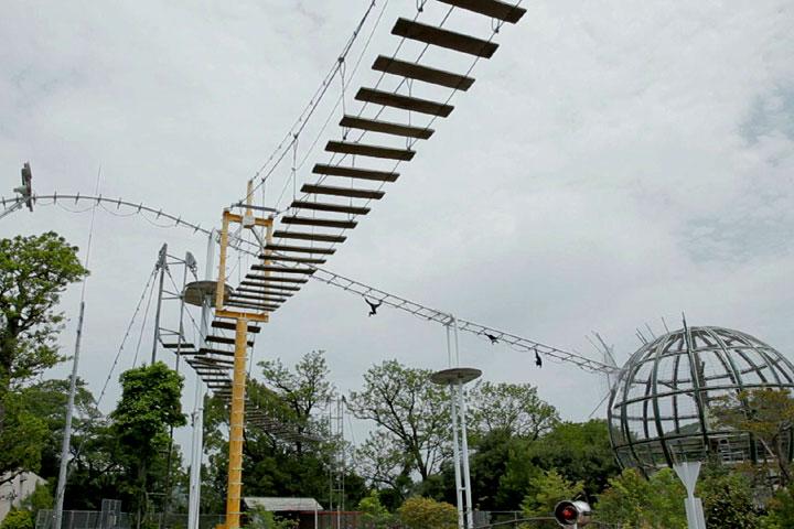 手長猿の全長200mの雲梯(うんてい)ブラケーション