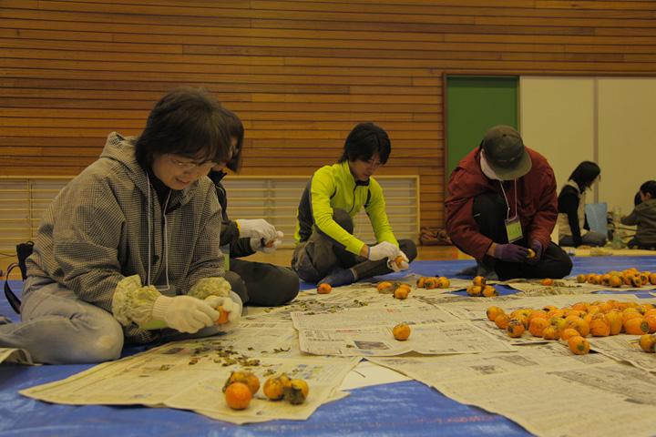 柿のへたを取る作業