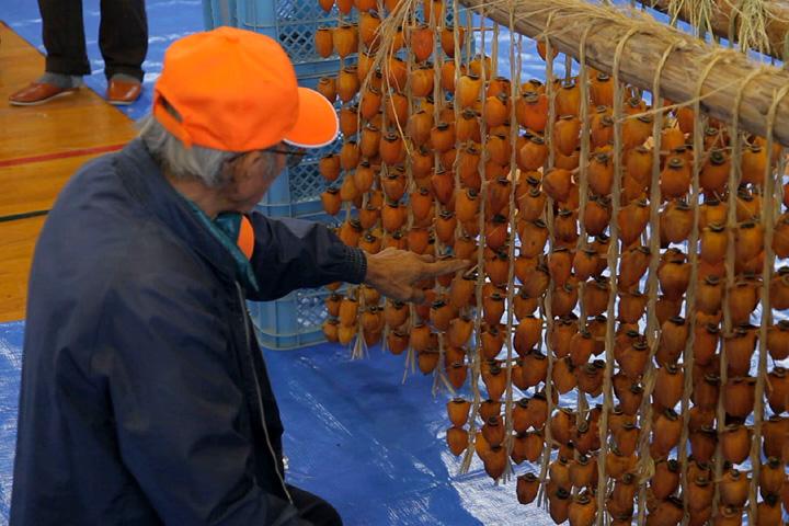 3週間程、吊るされた柿