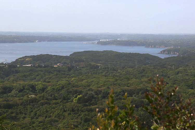 Matoya Bay