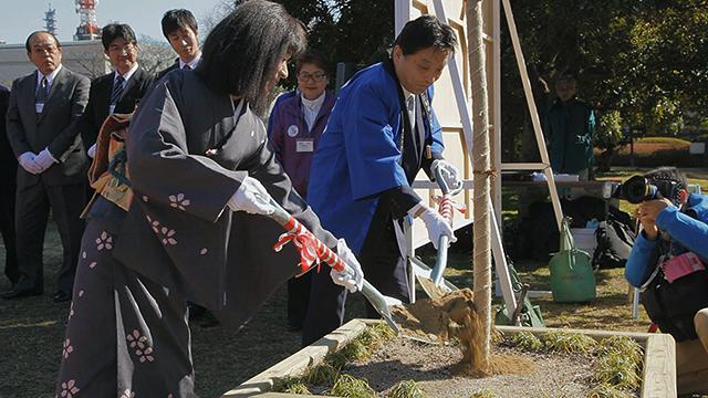 義直桜に土入れをする河村たかし名古屋市長と名古屋城文化フォーラム夢童由里子代表