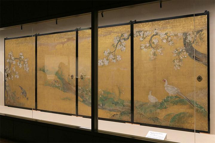 天守閣1階で重要文化財「本丸御殿障壁画」特別展示を開催.桜花雉子図