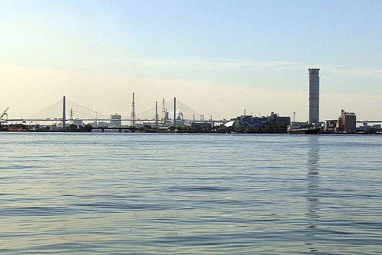 潮見埠頭-ワイルドフラワーガーデン