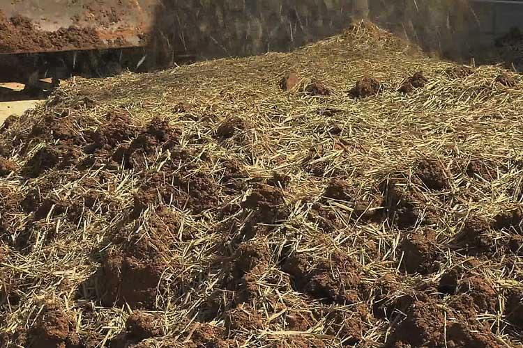 2種類の山土の上にまかれた藁スサ