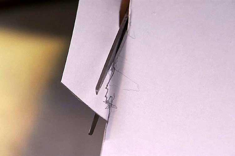 印に沿って型紙を切り取る