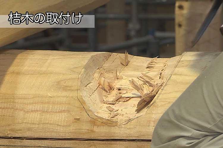桔木の支点となる土居桁の調整作業