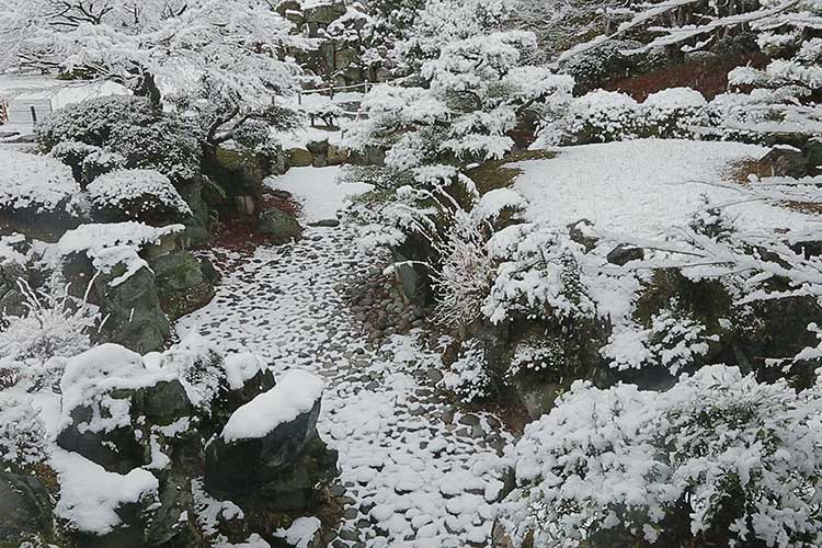名勝 二之丸庭園の雪景色