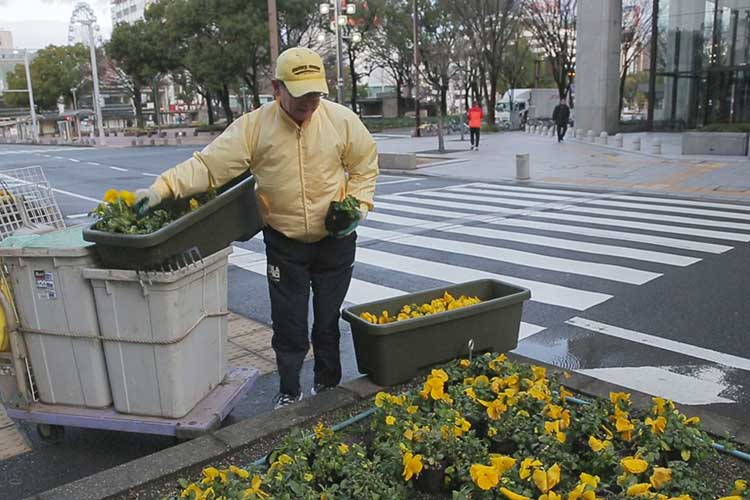 花壇の手入れ(am 8:00~am 9:00)
