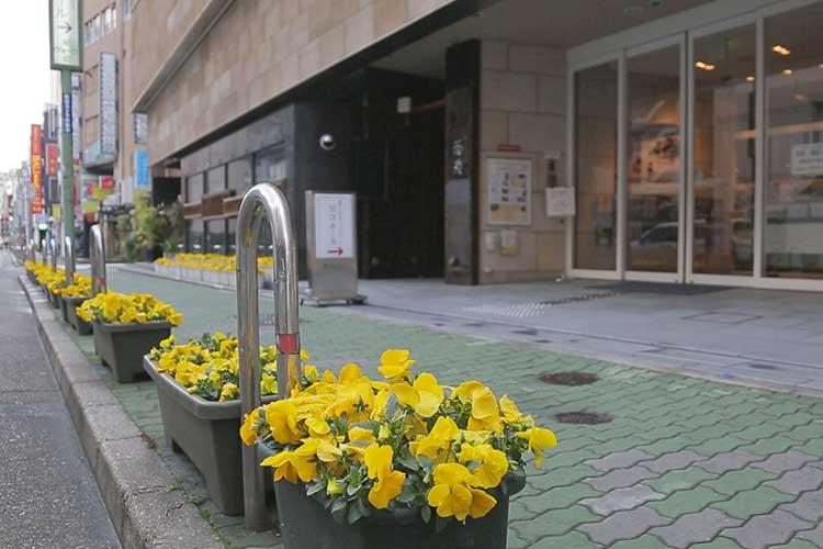 ホール前の歩道