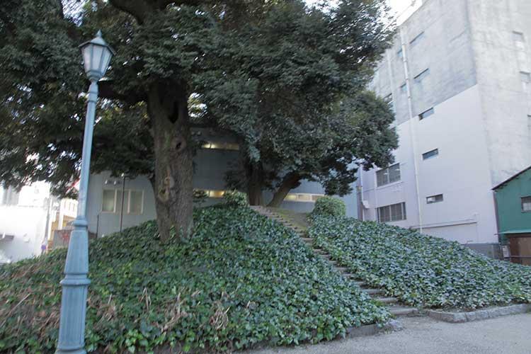 浪越公園-清寿院付近(現在)