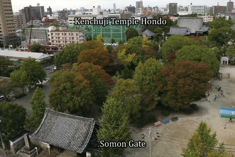 Cultural Path & Tokugawaen