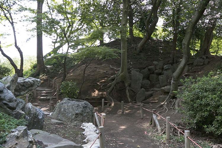栄螺山(さざえやま)東面調査区