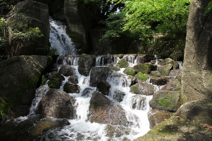 大曽根の瀧から流れた水
