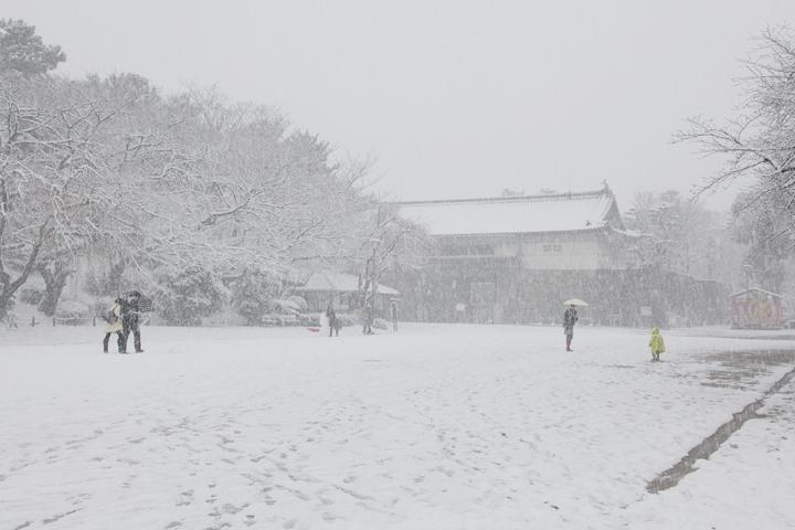 雪の名古屋城内(撮影:2011年1月16日)