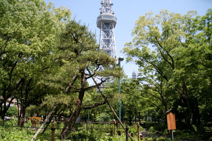 テレビ塔の下にある「小袖懸けの松」