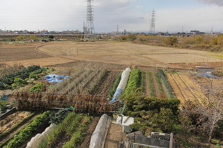 名古屋市北区楠町大字喜惣治新田中島の田畑。写真中央奥に見えるのは比良新橋