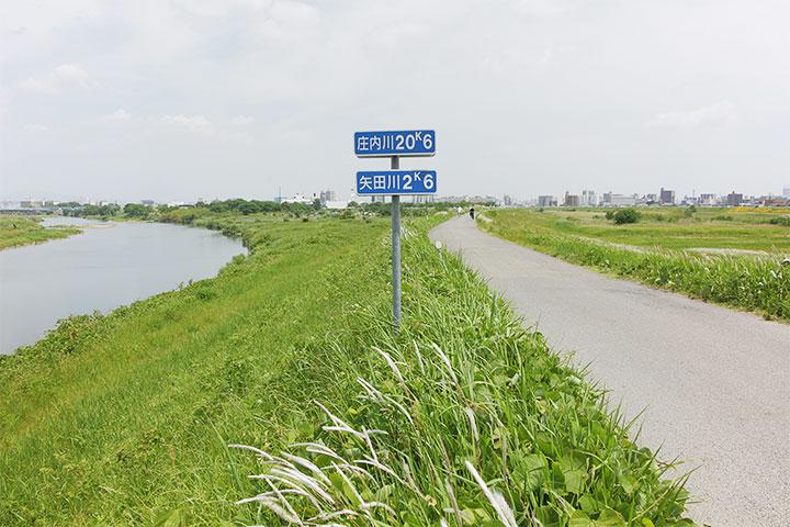 庄内川(左)と矢田川(右)を分かつ堤防