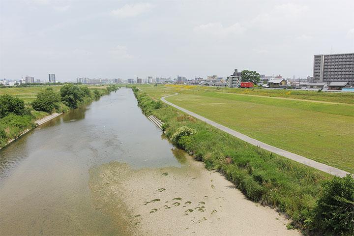 矢田川と堤防