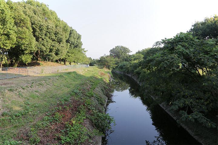 朝宮公園の間を新木津用水が流れている